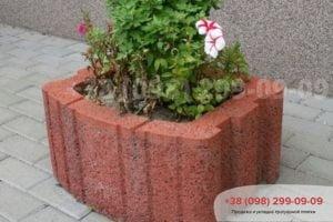 Cvetochnica kvadratnaja HX