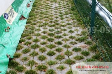 Тротуарная плитка парковочная решетка - 11