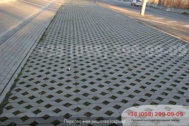 Тротуарная плитка парковочная решетка - 2