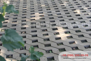 Тротуарная плитка парковочная решетка - 4