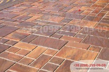 Иротуарная плитка пасссион - 13
