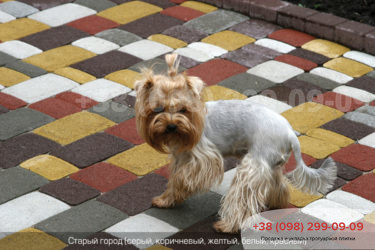 Тротуарная плитка Старый город - 72
