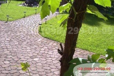 Тротуарная плитка в Козине. Фото - 29