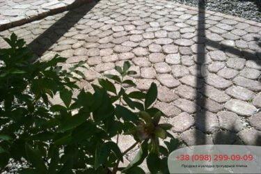 Тротуарная плитка в Козине. Фото - 3