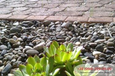 Тротуарная плитка в Козине. Фото - 25