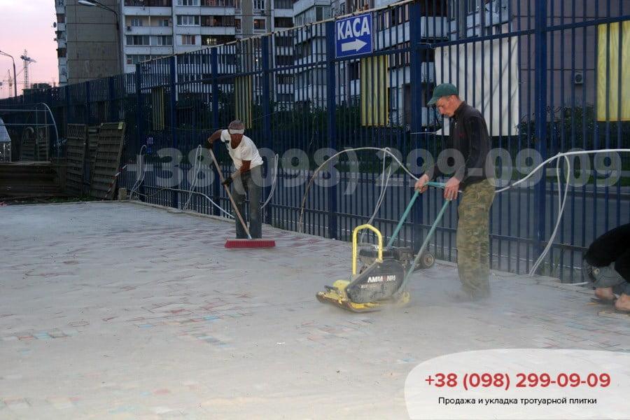 Укладка тротуарной плитки в Киеве фото 2