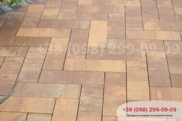 Тротуарная плитка колор-миксфото 353