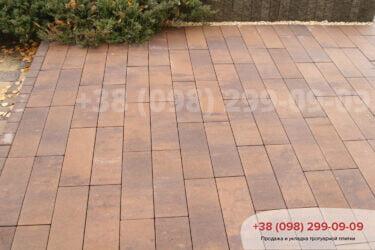 Тротуарная плитка колор-миксфото 352
