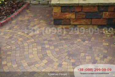 Тротуарная плитка колор-миксфото 119