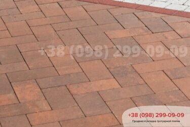 Тротуарная плитка колор-миксфото 193