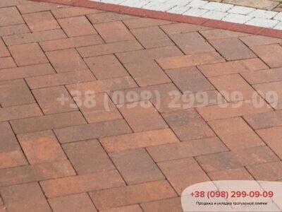 Тротуарная плитка Кирпич без фаски Сиенафото 1