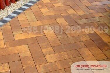 Тротуарная плитка колор-миксфото 243