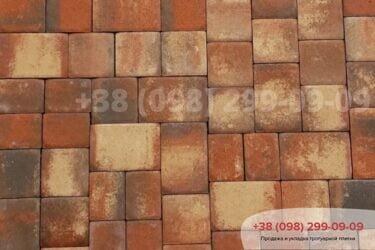 Тротуарная плитка колор-миксфото 314