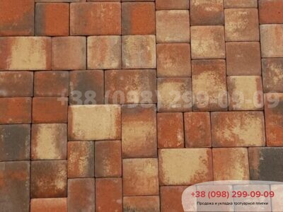 Тротуарная плитка Старая площадь Реджиофото 1