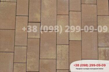 Тротуарная плитка колор-миксфото 46