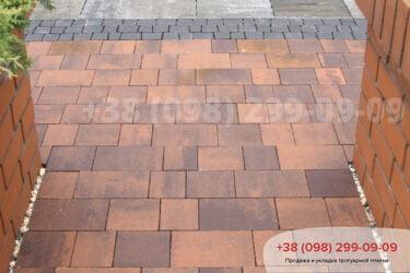Тротуарная плитка колор-миксфото 273