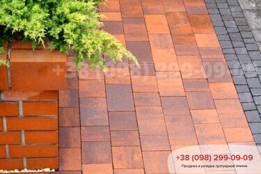 Тротуарная плитка колор-миксфото 282