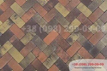 Тротуарная плитка колор-миксфото 191