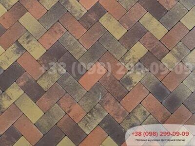 Тротуарная плитка Кирпич без фаски Генуяфото 3