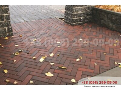 Тротуарная плитка Кирпич узкий Болоньяфото 4