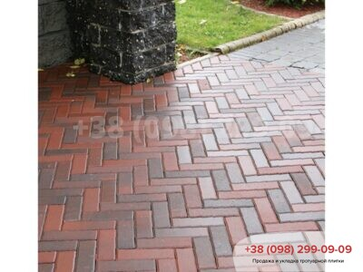 Тротуарная плитка Кирпич узкий Болоньяфото 1