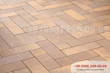 Тротуарная плитка колор-миксфото 238