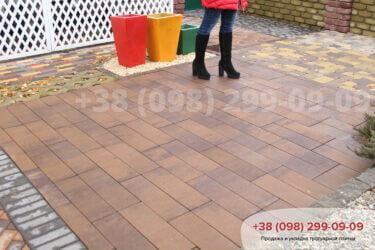 Тротуарная плитка колор-миксфото 225