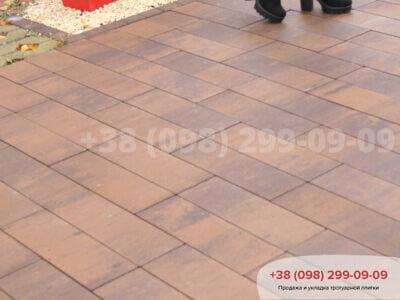 Тротуарная плитка Паркет Савонафото 3
