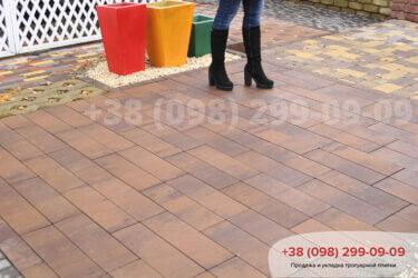 Тротуарная плитка колор-миксфото 226
