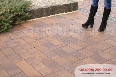 Тротуарная плитка колор-миксфото 222