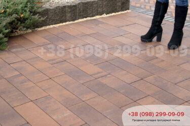 Тротуарная плитка колор-миксфото 221