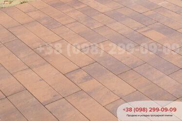 Тротуарная плитка колор-миксфото 220