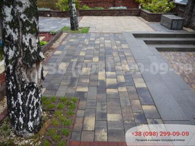 Тротуарная плитка Паттерн Росанофото 2