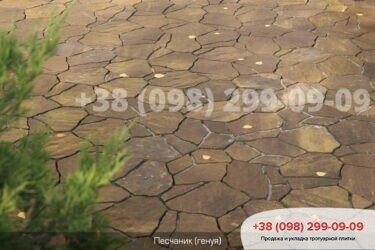 Тротуарная плитка колор-миксфото 265