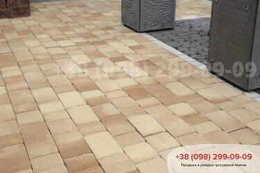 Тротуарная плитка колор-миксфото 308