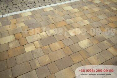 Тротуарная плитка колор-миксфото 319