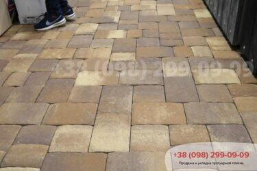 Тротуарная плитка колор-миксфото 318