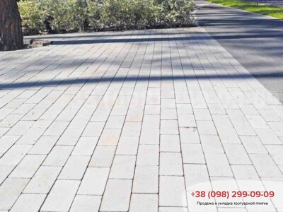 Тротуарная плитка Кирпич без фаски Белыйфото 1
