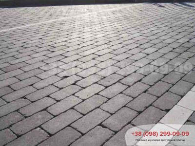 Тротуарная плитка Кирпич 200х100 Антик Серыйфото 1