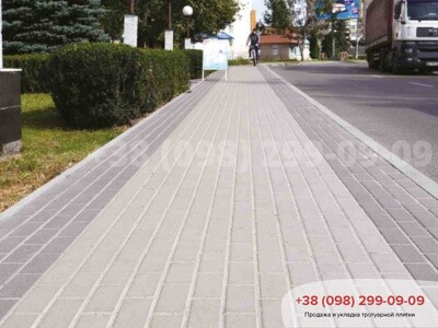 Тротуарная плитка Кирпич 200х100 Чернаяфото 4