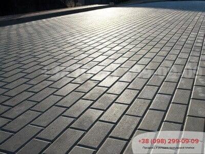 Тротуарная плитка Кирпич 200х100 Сераяфото 1