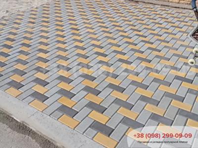 Тротуарная плитка Кирпич 200х100 Сераяфото 22