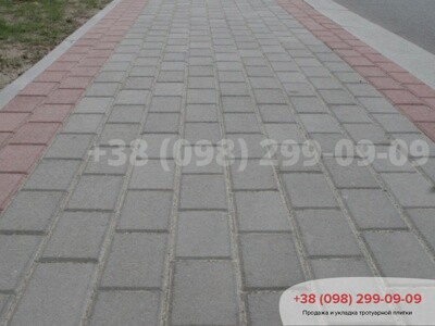 Тротуарная плитка Кирпич 200х100 Серыйфото 10