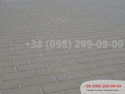 Тротуарная плитка Кирпич 200х100 Серыйфото 12