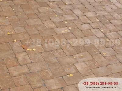 Тротуарная плитка Кирпич 240х160х90 Антик Коричневыйфото 14