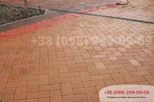 Персиковый Тротуарная плитка Кирпич без фаски Персик