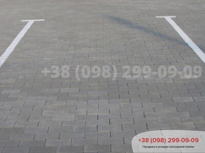 Тротуарная плитка Кирпич без фаски Сераяфото 2