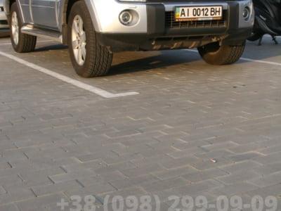 Тротуарная плитка Кирпич без фаски Сераяфото 13