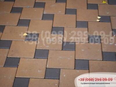 Тротуарная плитка Квадрат 100х100 коричневыйфото 5