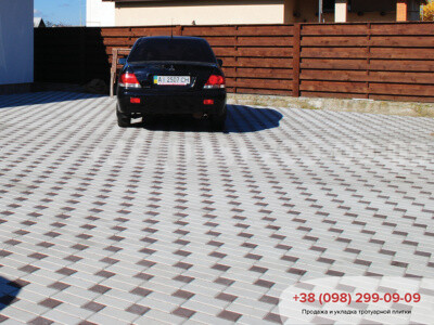 Тротуарная плитка Квадрат 100х100 коричневыйфото 13